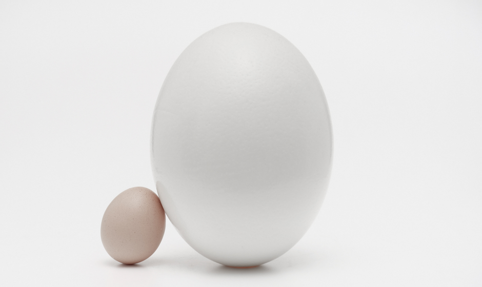 Small egg next to big egg