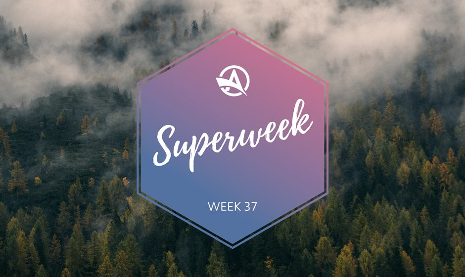 Superweek Autumn logo on woods