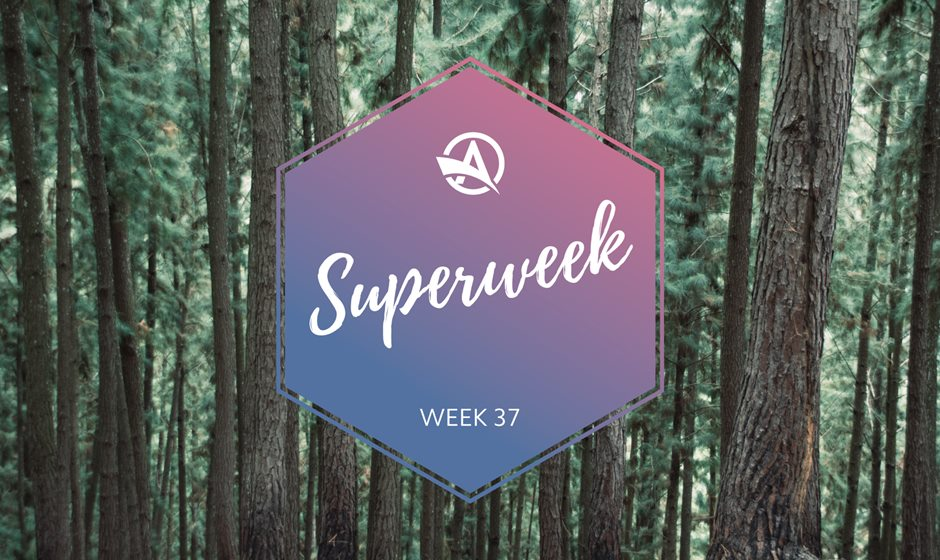Superweek Autumn logo on trees